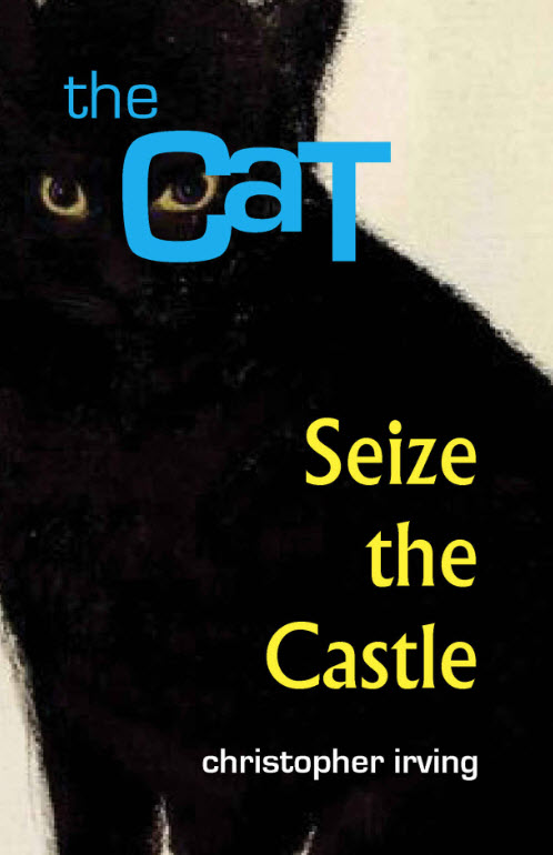 Eagle Force Pulp The Cat Seize the Castle - Surveillance Port