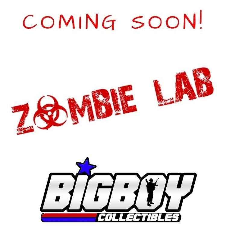 Big Boy Collectibles Zombie Lab Poster - Surveillance Port