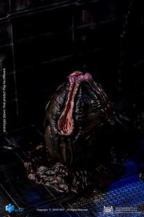 Hiya Toys Alien Convenant Egg and Facehugger Set - Surveillance Port (11)