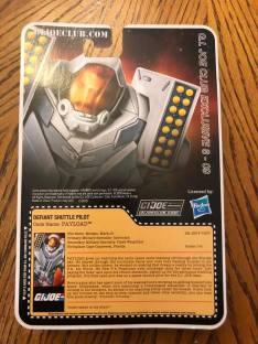 gijcc fss 8 payload card back - surveillance port 02