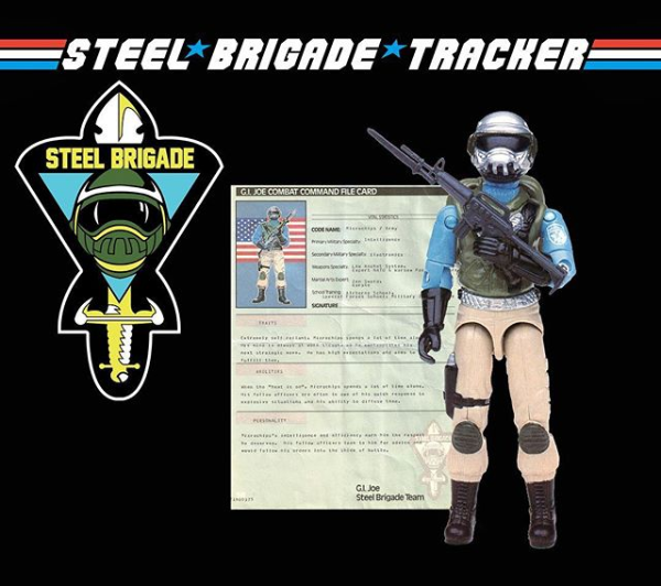steelbrigadetracker.com logo - surveillance port