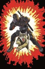 Snake Eyes Deadgame #1 2020 ComicCon SDCC Home Exclusive IDW Publishing GI Joe